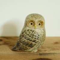 Lisa Larson / OWL
