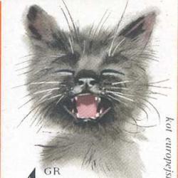 ポーランド 1964年猫10種