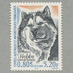 仏領南方南極地方 2000年ソリ犬Hobbs