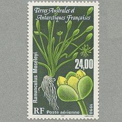 仏領南方南極地方 1998年Ranunculus Moseleyi