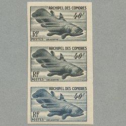 コモロ諸島 1954年シーラカンス トライアルカラープルーフ