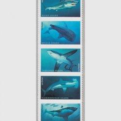 アメリカ 2017年サメ5種連刷