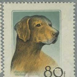 ハンガリー 1956年ハンガリーの犬8種