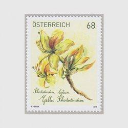 オーストリア 2018年西洋シャクナゲ