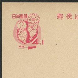 年賀はがき 1956年用福寿草