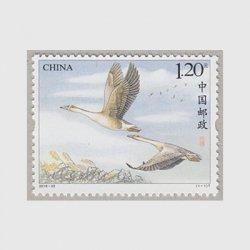 中国 2018年大雁