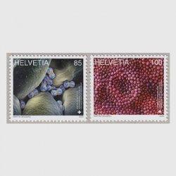 スイス 2020年顕微鏡アート2種