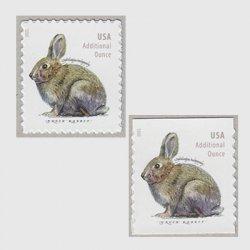 アメリカ 2021年ブラシウサギ