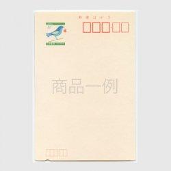 青い鳥はがき「1993 平成5年」41円 ・くぼみ入り