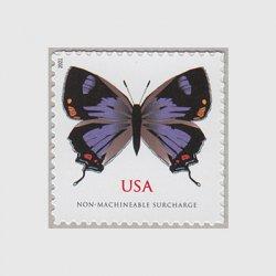 アメリカ 2021年蝶