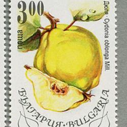 ブルガリア 1993年フルーツ6種