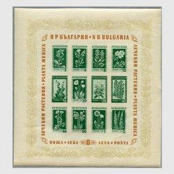 ブルガリア 1953年花小型シート