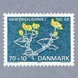 デンマーク 1972年マリーゴールド