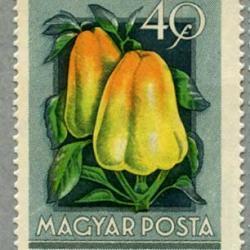 ハンガリー 1954年フルーツ8種