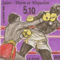 サンピエール・ミクロン 1996年ボクシング