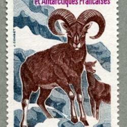 仏領南方南極地方 1985年コルシカ山羊