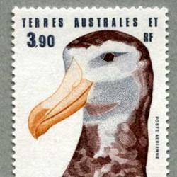 仏領南方南極地方 1985年アムステルダムアルバトロス