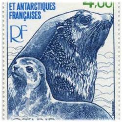 仏領南方南極地方 1979年アシカ