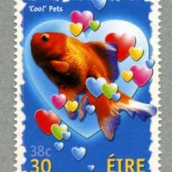 アイルランド 2001年金魚