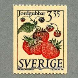 スウェーデン 1995年イチゴ