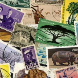 南西アフリカ
