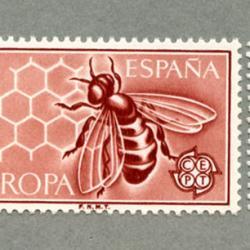 スペイン 1962年ミツバチ2種