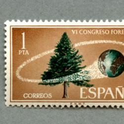 スペイン 1966年森林会議