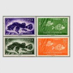 スペイン領サハラ 1953年カサゴなど4種