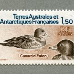 仏領南方南極地方 1983年Eaton's duck2種