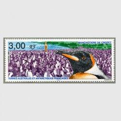 仏領南方南極地方 1999年Crozet島のペンギン