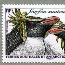 仏領南方南極地方 2008年ロックホッパーペンギン