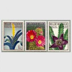 ベルギー 1965年ヘント国際花博3種
