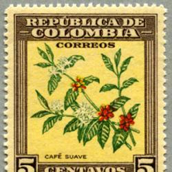 コロンビア 1947年コーヒーの花と実