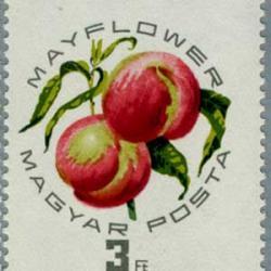 ハンガリー 1964年もも博覧会8種