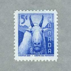 カナダ 1956年シロイワヤギ