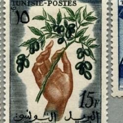 チュニジア 1956-7年果物市場など6種