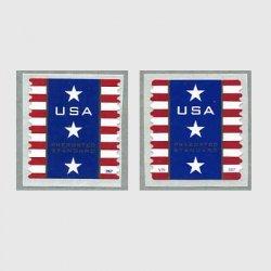アメリカ 2007年愛国旗SAコイル