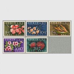スリナム 1962年花5種