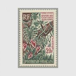 フランス領ポリネシア 1965年学校食堂計画