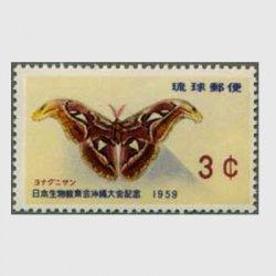 沖縄 1959年生物教育会