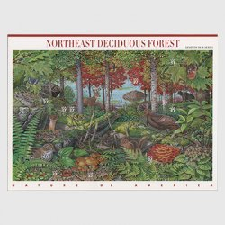 アメリカ 2005年北東部の落葉樹林