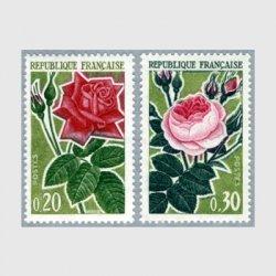 フランス 1962年バラ2種