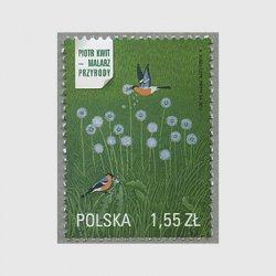 ポーランド 2012年Piotr kwitの作品
