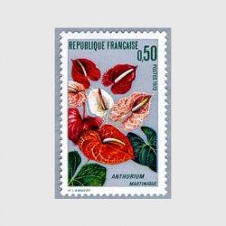 フランス 1973年アンセリウム