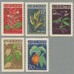 ベトナム 1963年花と実5種