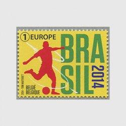 ベルギー 2014年FIFAワールドカップ ブラジル大会