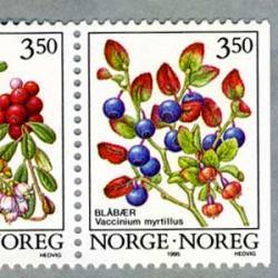 ノルウェー 1995年ベリー2種
