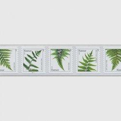 アメリカ 2015年シダ類5種連刷コイル・セルフ糊