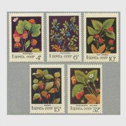 ロシア 1982年ベリー5種