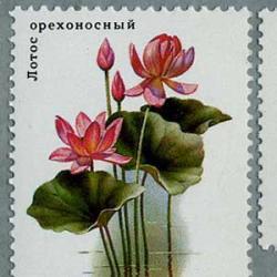 ロシア 1984年水生植物5種